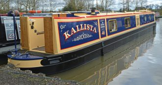 Kallista – 4 weeks Yellow share – Reduced